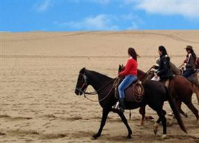 chan chan horseriding
